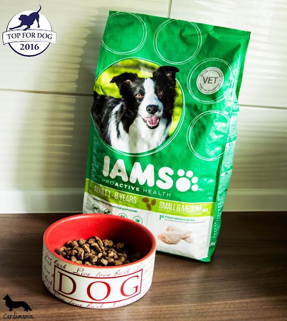 topfordog, eukanuba, karma dla psów, sucha karma, jedzenie dla psów, czym karmić psa, co dawać psu do jedzenia, najlepsza karma dla psa