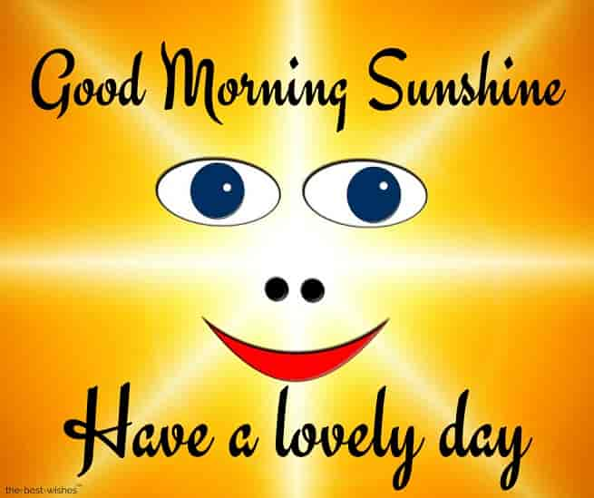 good morning sunshine have a lovely day
