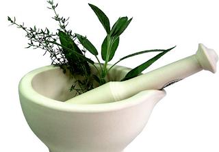 8 Tanaman obat herbal anti hipertensi