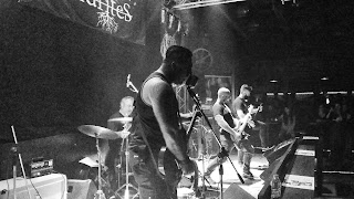 Dendrites live photo