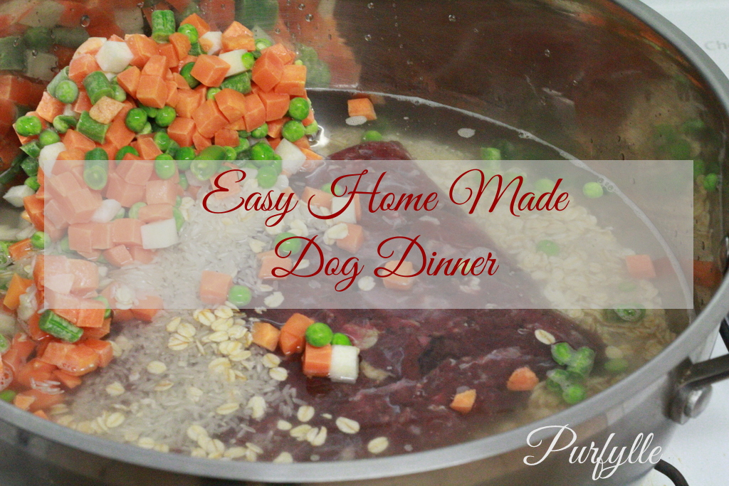 Easy home made dog food recipe