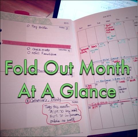 Fun Monthly Calendar 2019 printable calendar / 2019 wall calendar