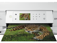 Epson XP-645 Driver & Software Download - Windows, Mac