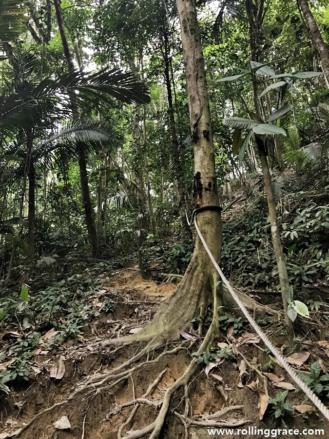 Hiking Suka-Suki Ke Bukit Gasing
