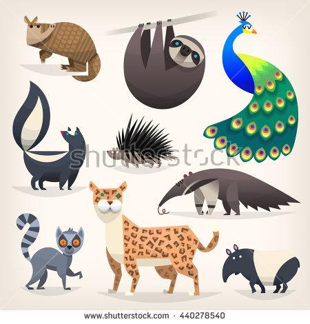 Animal Names In Tamil