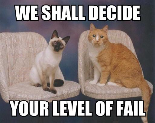 cats_fail-14143.jpg
