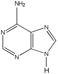 molekul atom N