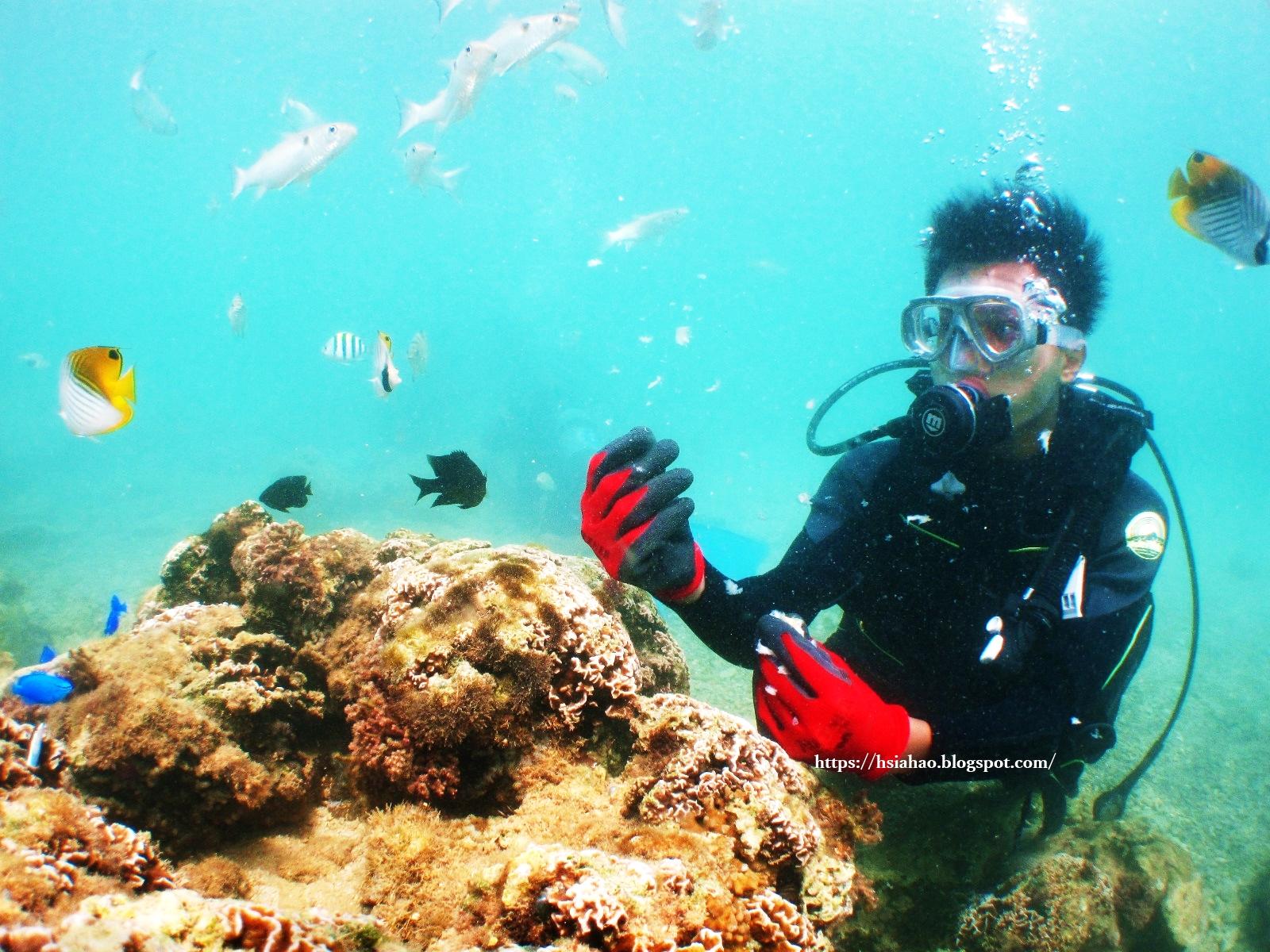 沖繩-推薦-景點-真榮田岬-青之洞窟-真榮田岬潛水-真榮田岬浮潛-青之洞窟潛水-青之洞窟浮潛-青の洞窟-自由行-旅遊-Okinawa-diving-snorkeling-maeda-cape-blue-cave