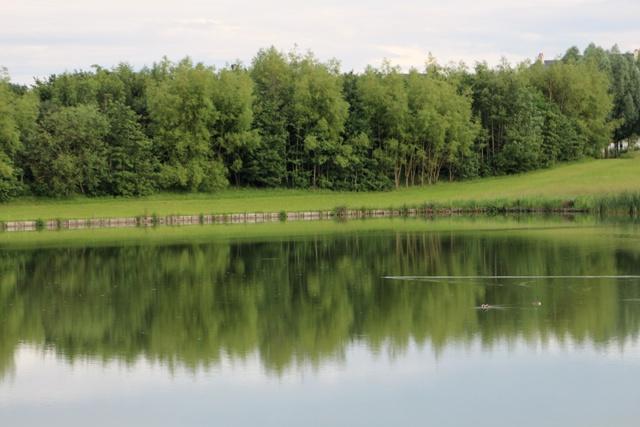 Atardecer en el lago del Hotel Explorers