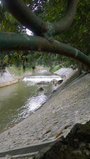 Di Kebun Raya Bogor