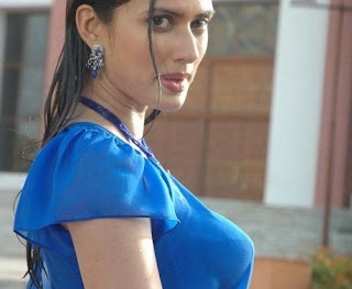 hot-wet-saree