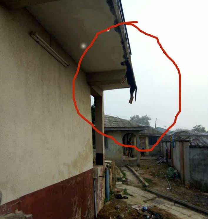 Landlord hangs tenant's dog to death in Lagos