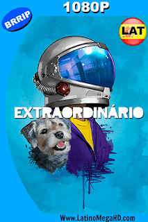 Extraordinario (2017) Latino HD 1080P - 2017