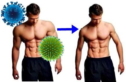 Virus de la gripe atacando a hombre musculoso
