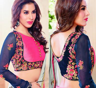 Latest Satin Sari Designs 2015