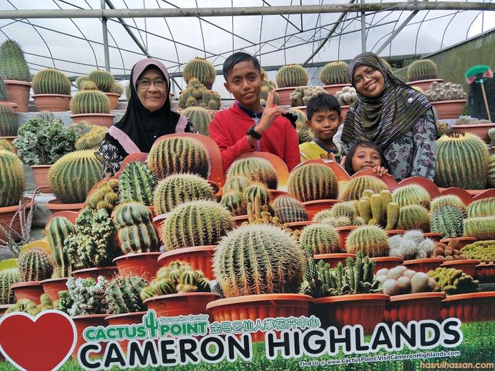 Cameron Highlands - Syurga Mendapatkan Cactus di Malaysia