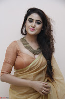 Sony Charistha in Lovely Brown Saree and Choli Spicy Pics ~  Exclusive 16.JPG
