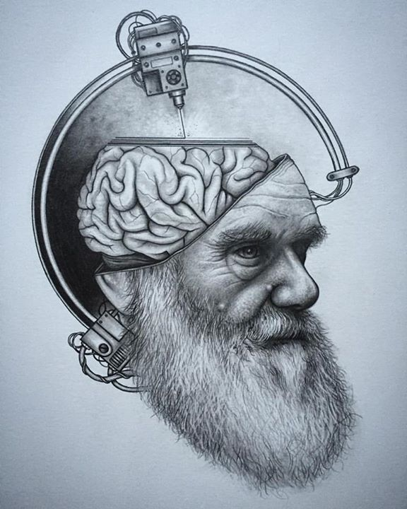 08-3D-Printing-Charles-Darwin-Brain-Paul-Jackson-Star-Wars-Miniature-Drawings-www-designstack-co