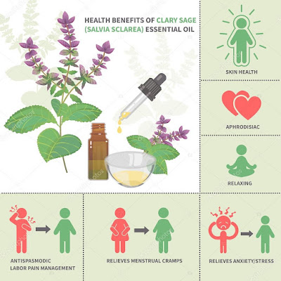 Clarry Sage benefits for chronic conditions