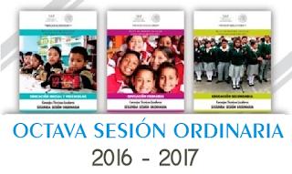 Octava sesión ordinaria CTE 2016-2017