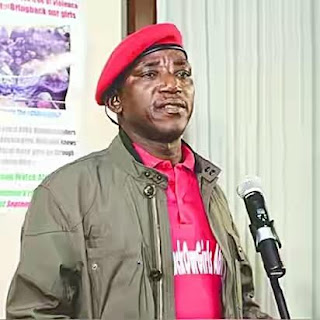 Sports minister, Dalung, says Buhari became president without godfathers. Blames 'urban gorillas' for Nigeria's political problems