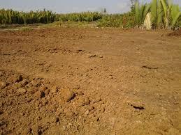 Pemeriksaan Tanah dalam Ilmu Bangunan