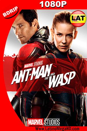 Ant-Man and The Wasp (2018) Latino HD BDRIP 1080P ()