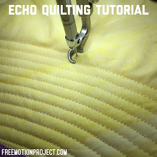 Echo Quilting Tutorial Sit Down Longarm Quilting