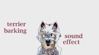 extra sounds