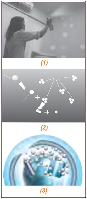 Proses terbentuknya ozon yang disebabkan oleh pengharum