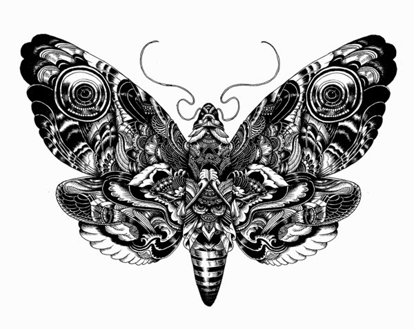 22-Iain-Macarthur-Precision-in-Surreal-Wildlife-Animals-Drawings-www-designstack-co