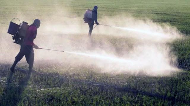 As empresas de abastecimento de 1.396 municípios detectaram todos os 27 pesticidas que são obrigados por lei a testar (Foto: Divulgação)