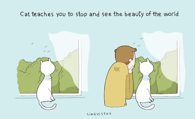 Masum-Kedi