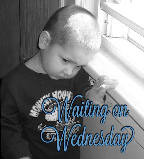 Waiting on Wednesday #7