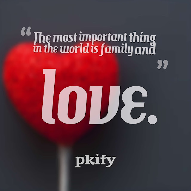 The Most Important Thing in the World Is Family and Love Love Quotes