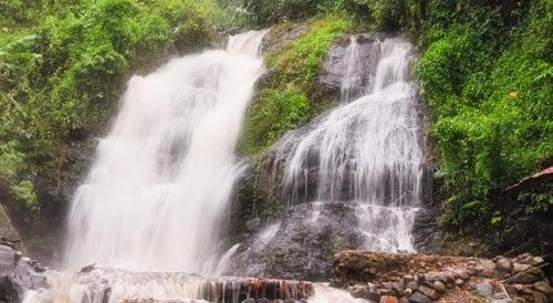 tempat wisata Hutan Wisata Tegal Waru