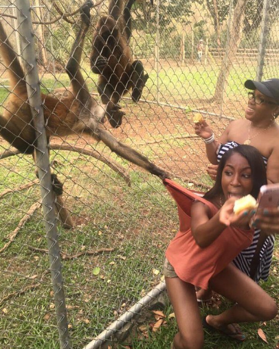 Selfie with a Monkey gone wrong