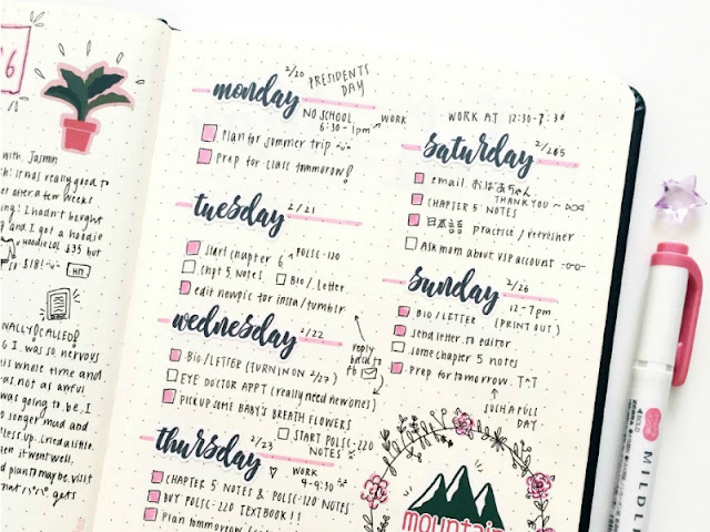 Pink and Black Bullet Journal