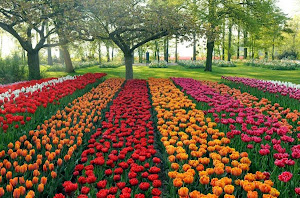 The Largest Flower Garden in Europe