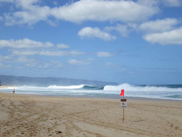 aloha kai swim