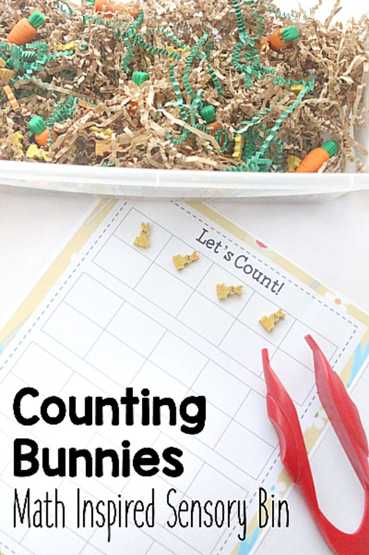 mini eraser rabbit counting activity