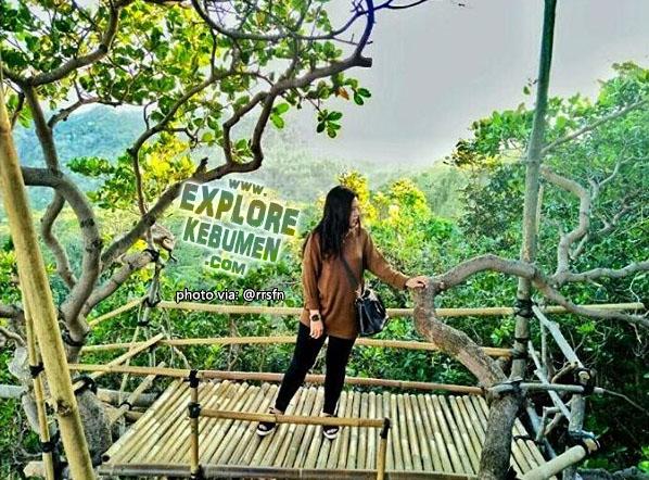 Rumah Pohon Goa/Gua Cocor Sikayu Buayan Kebumen