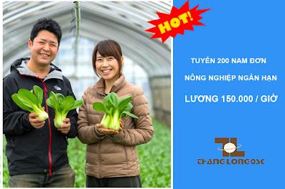 Đi xuất khẩu lao động Nhật bản làm nông nghiệp ngắn hạn