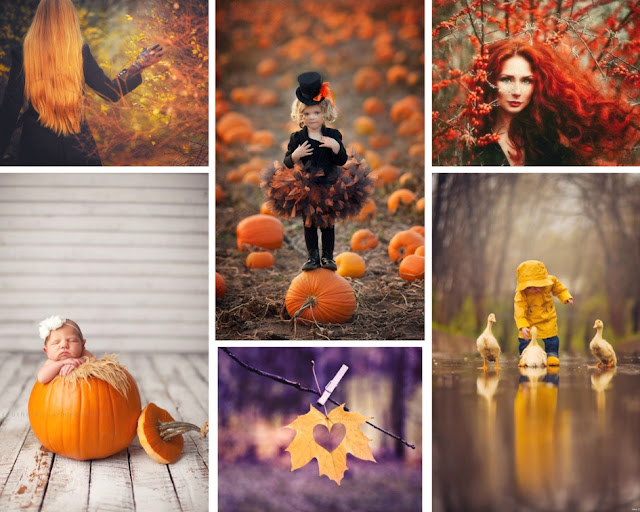 Kolaż jesiennych zdjęć