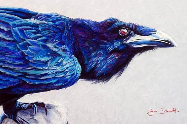 07-Raven-Large-Scale-Soft-Pastel-Drawings-Of-Wild-Ainimals-www-designstack-co