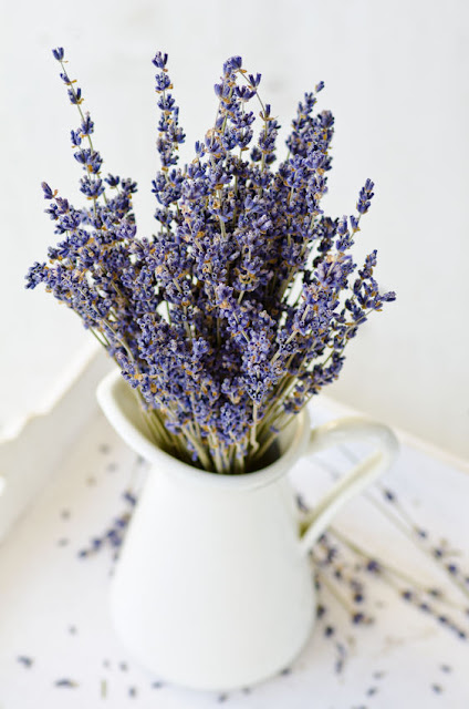 Lavender from my garden Debt Free Cashed Up and Laughing