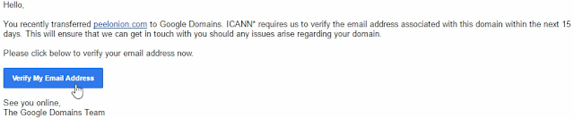 google domains email verification