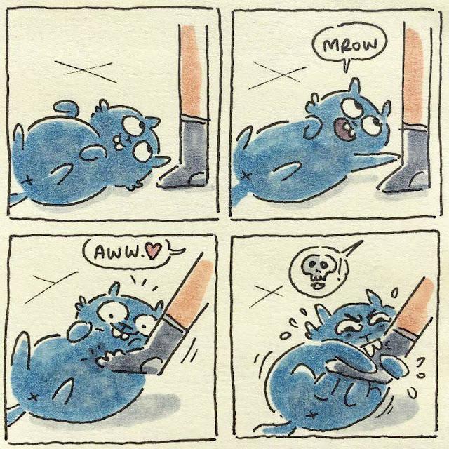 cuando el gato juega con tus piernas, humor gatos