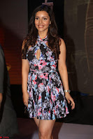 Kyra Dutta in a Deep neck Small Dress at Shamanthakamani pre release function ~  Exclusive 119.JPG