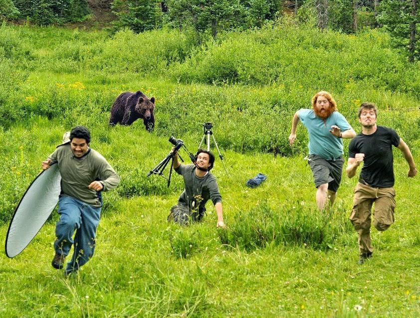 أنواع التصوير: تصوير الحياة البرية.